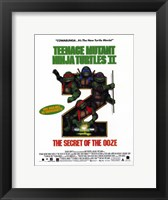 Framed Teenage Mutant Ninja Turtles 2: The Secret of the Ooze