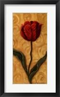 Framed Red Tulip