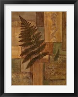 Framed Autumn Fern