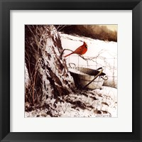 Country Cardinal Framed Print