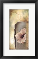 Framed Hibiscus in White II
