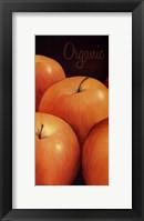 Framed Organic