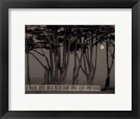 Framed Twilight and Reverie