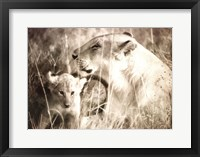 Framed Masai Mara II