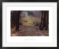 Framed Silent Path