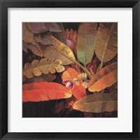 Tropical Leaves II Framed Print