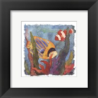 Tropical Fish II Framed Print