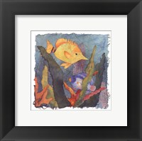 Framed Tropical Fish III