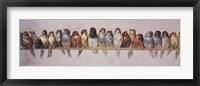 Framed Bird Perch