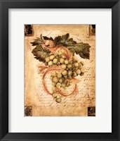 A Rich Harvest I Framed Print