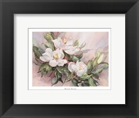 Framed Magnolia Blossoms