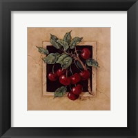 Cherry Square Framed Print