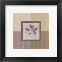 Leaf Spray l Framed Print