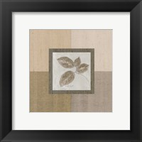 Leaf Spray ll Framed Print