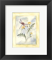 Framed Dragonfly With Yellow Flowers