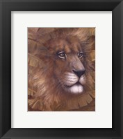 Framed Safari Lion