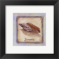 Junania Framed Print