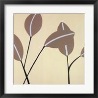 Framed Reeds