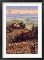 Golden Vineyard II Framed Print