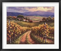 Vineyard Hill I Framed Print