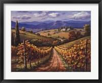 Vineyard Hill II Framed Print