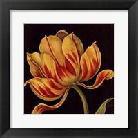 Framed Fleur Rouge Et Jaune