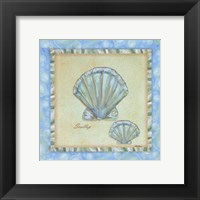 Bubble Bath Shells II Framed Print