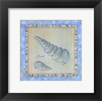 Bubble Bath Shells IV Framed Print