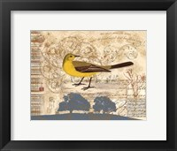 Framed Bird Brained I