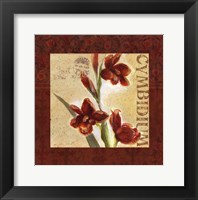 Framed Red Orchid Square II