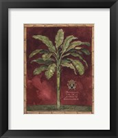 Framed Caribbean Palm II With Bamboo Border