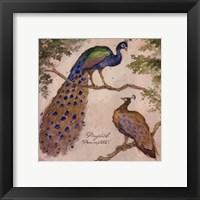 Framed Peafowls