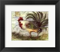 Le Rooster IV Framed Print