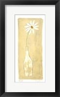 Daisy ll Framed Print