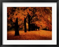 Framed Gold Of Autumn East