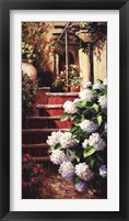 Hydrangea Steps Right Framed Print