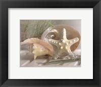 Framed Cali Starfish IV