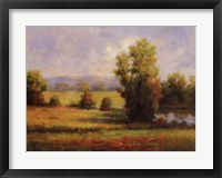 Framed Red Meadow I