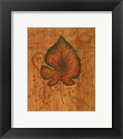 Framed Autumn Leaf II