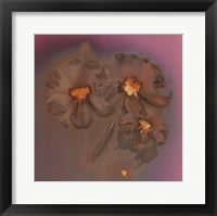 Framed Ghost Flowers II