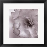 Framed Blossom [Two]