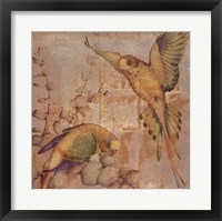 Songbirds II Framed Print