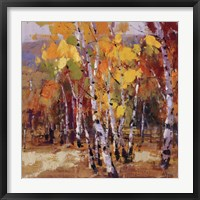 Framed Aspen Gold 1