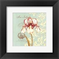 Framed Toile Iris