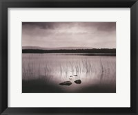 Framed Lough Bunny