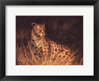 Spotted African Cat Framed Print