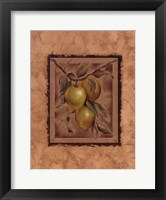 Framed Citron Fructus
