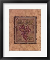 Framed Raisin Fructus