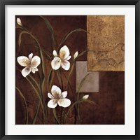 Framed Orchid Melody I