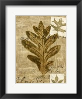 Framed Leaf Collage I